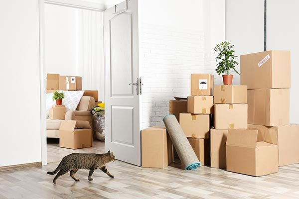 House Relocations